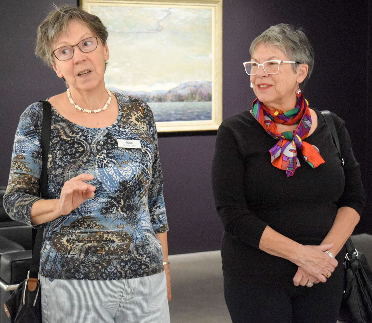 Docent Jane Bouchette, left, conducts a tour at JNAAG with Anne Craig, right, and a group from Wellings of Corunna. Cathy Dobson